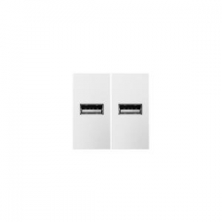 Adorne ARUSBW4 | White USB Outlet 1-Module | A6ARUSBW4 | 78500702267 | KM Electric Supply, Inc